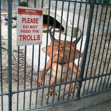 Do_not_feed_trolls